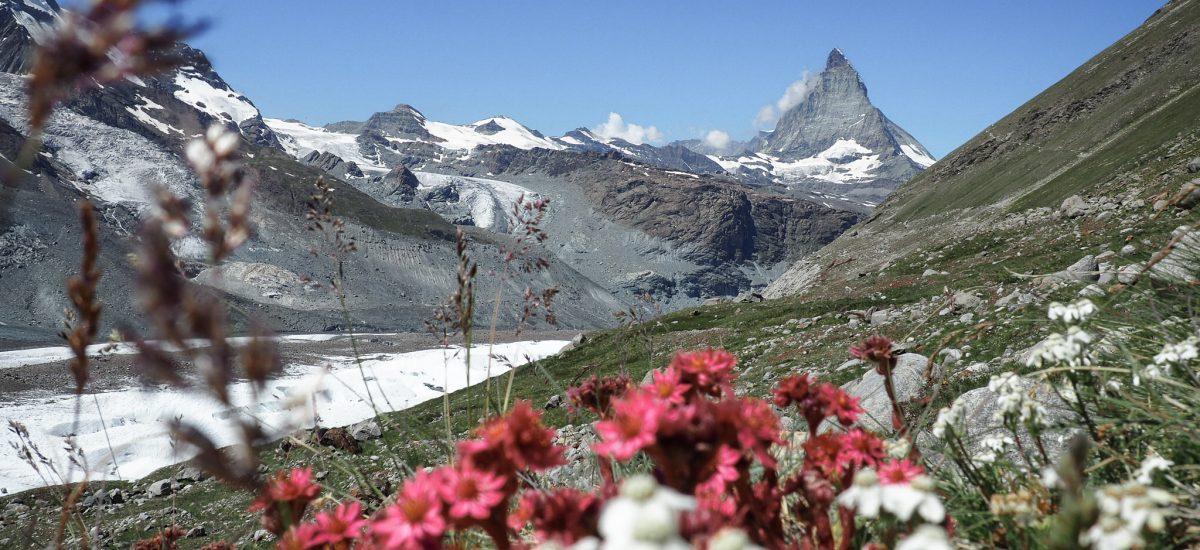 4 Tage Wandern im Kanton Bern und Wallis