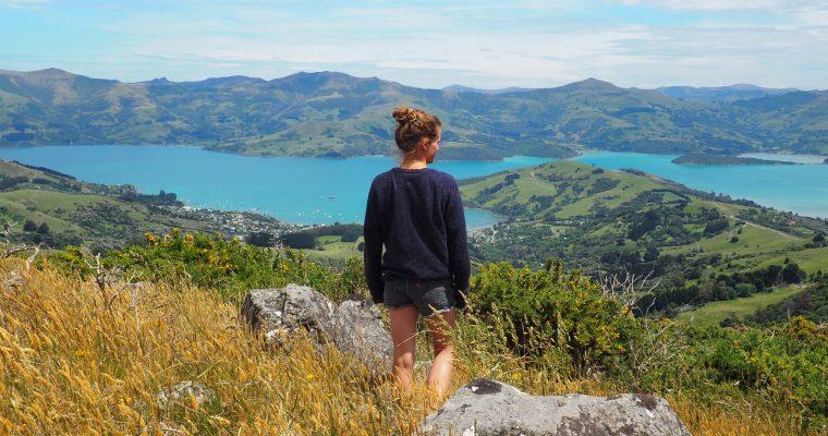 South Island – meine ungeplanten Ausflüge