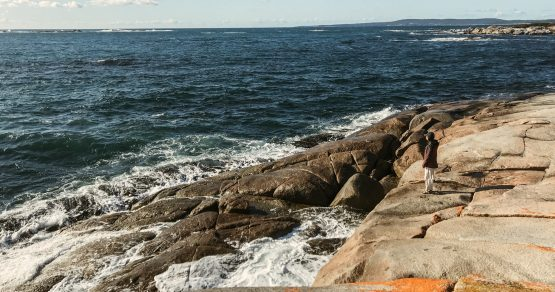 1 Woche auf der größten australischen Insel – Welcome to Tasmania