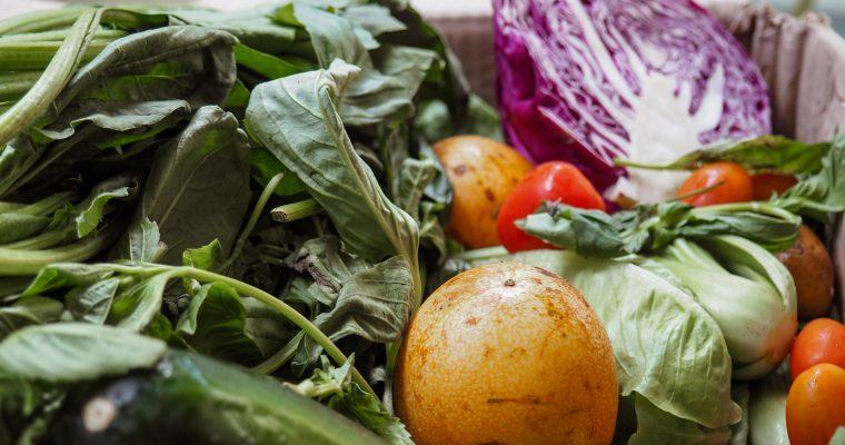 Selbstexperiment – 30 Tage vegan und Intervallfasten